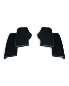 Set of carbon wings.